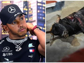 Lewis Hamilton, contra la tauromaquia en España