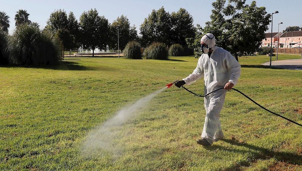 Un operario fumiga unos jardines en Coría del Río