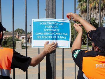 Dos miembros de protección civil colocan un cartel tras la fumigación de uno de los jardines de Coría del Río