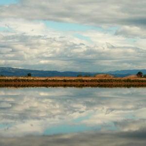 Paisaje en el Delta del Ebro