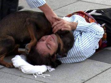 Un perro socorre por error a un actor 'herido' y se hace viral en redes sociales