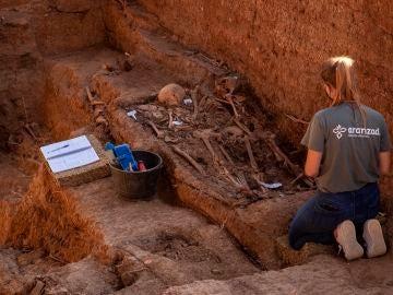 Trabajos de exhumación de la fosa común de Pico Reja en el cementerio de San Fernando de Sevilla