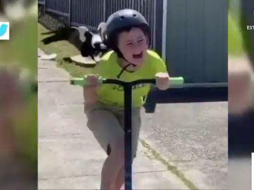 El vídeo viral de un niño gritando en patinete mientras es perseguido por un pájaro