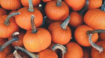 Halloween 2020: estas son las más terroríficas y deliciosas recetas para la fiesta