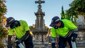 Dos empleados realizan labores de limpieza y desinfección en el cementerio de Palma