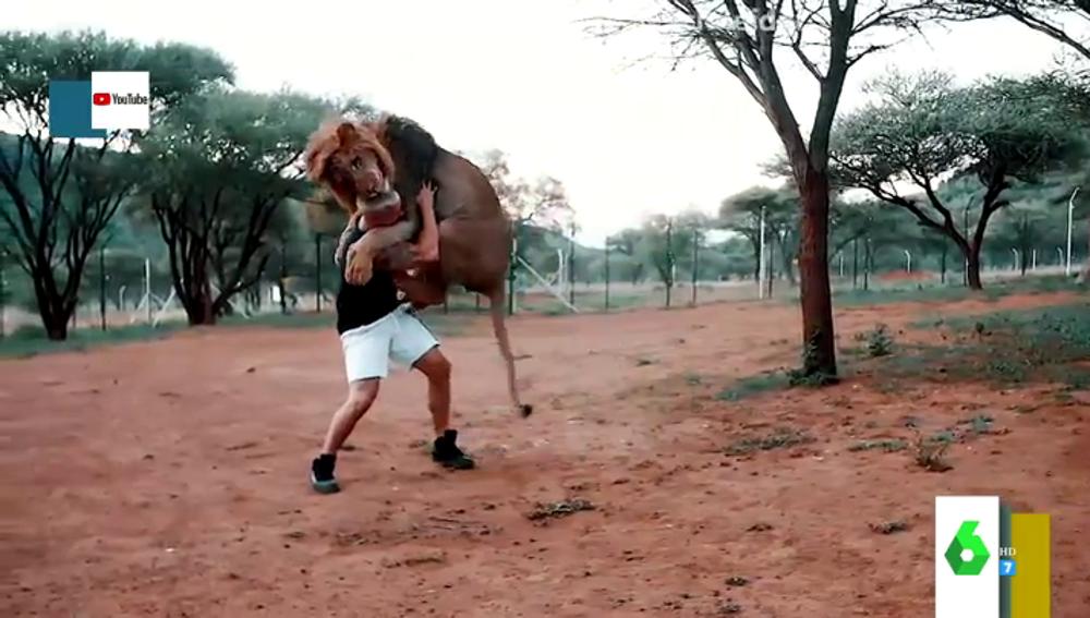 Los impresionantes vídeos del youtuber Dean Schneider con leones, hienas y elefantes en una reserva de África
