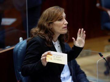 La portavoz de Más Madrid, Mónica García