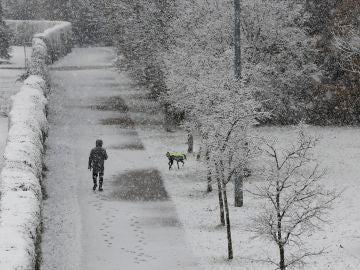 Una persona pasea junto a su perro por el paseo del río Arga