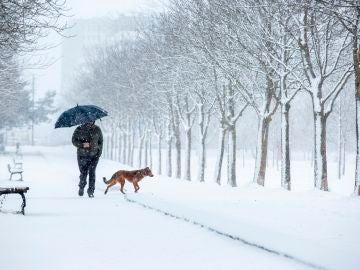 Un hombre pasea por la nieve en un parque del sur de Vitoria