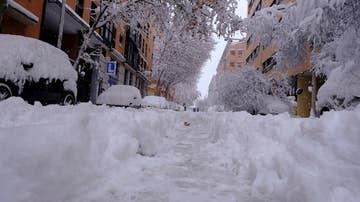 Árboles caídos por el peso de la nieve en el distrito de Arganzuela de Madrid