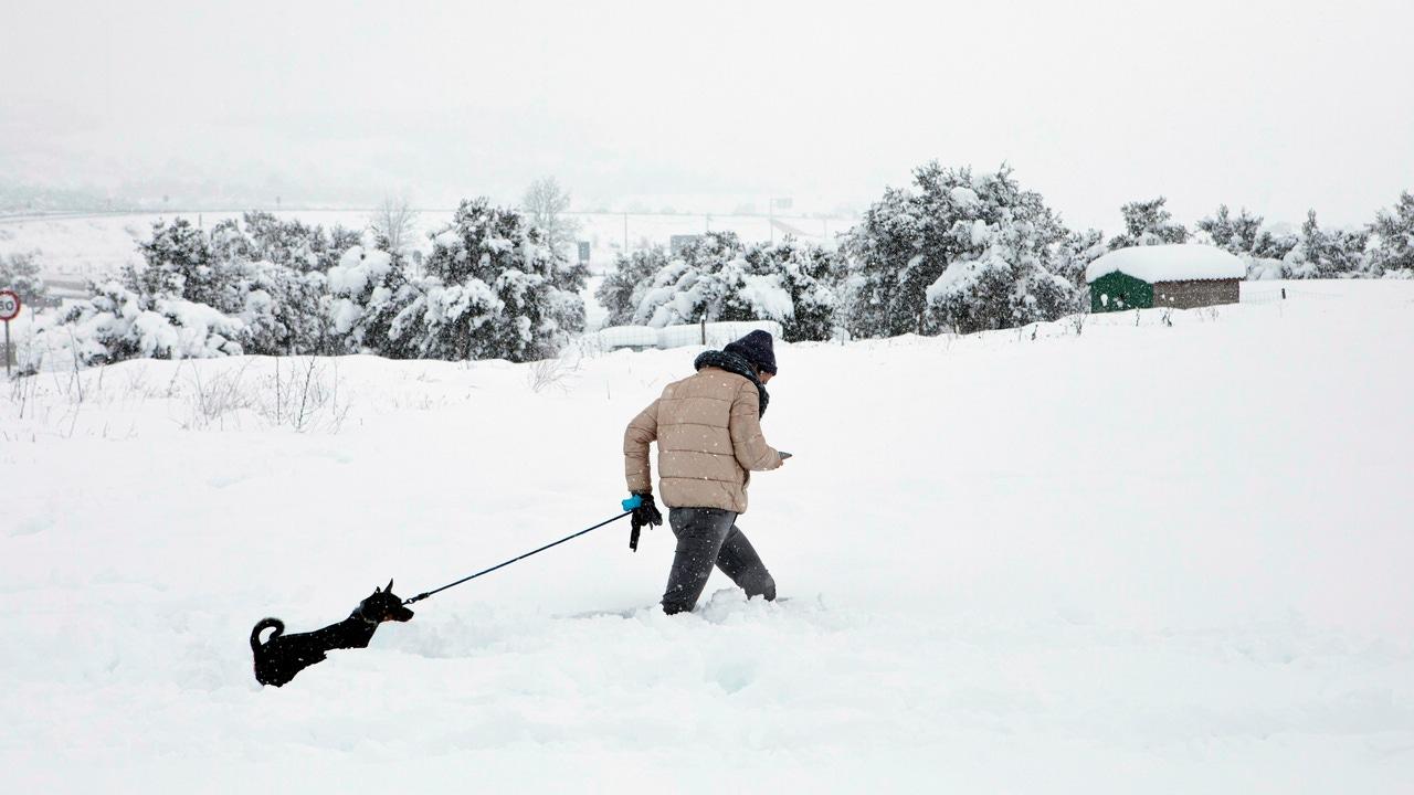 Una persona pasea con su perro en la nieve en Barracas (Castellón)