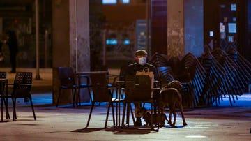 Un hombre con sus dos perros sentado en la terraza de un bar de Madrid