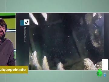 Hallazgo de unos submarinistas en un lago suizo