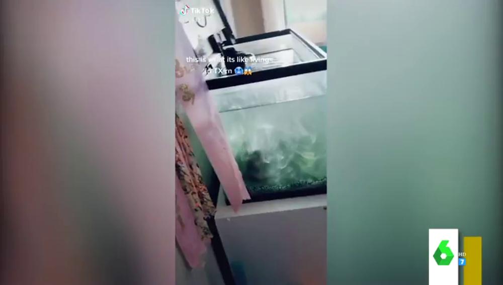 Pecera congelada