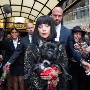 Lady Gaga con su perro en brazos Lady Gaga con su perro en brazos Lady Gaga con su perro en brazos Lady Gaga con su perro en brazos Lady Gaga con su perro en brazos
