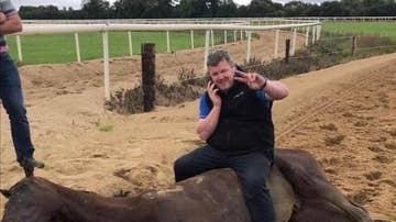 Gordon Elliott subido a un cabalo muerto