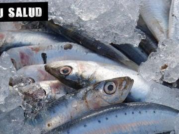 Imagen de archivo de pescado azul