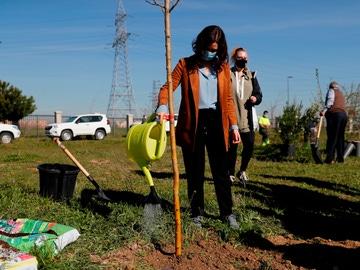 La presidenta de la Comunidad de Madrid, Isabel Díaz Ayuso, participa este martes en Getafe en las tareas de reforestación dirigidas a paliar la pérdida de arbolado a causa de la borrasca Filomena.