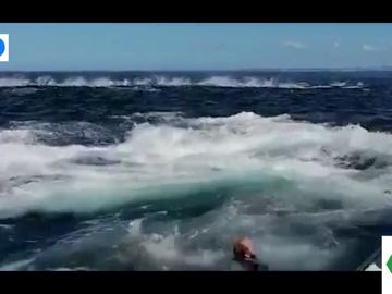 El impactante vídeo en el que un hombre cae al agua tras el coletazo de una ballena en su barco