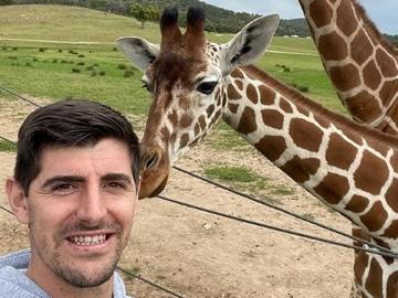 Courtois con una jirafa