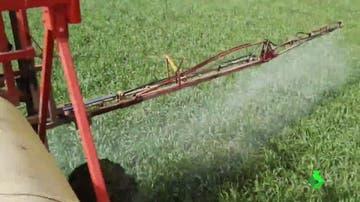 Imagen de cultivo con pesticidas