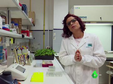 Dolores Fernández, científica