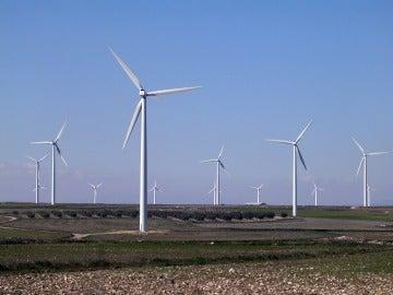 Parque eólico La Muela