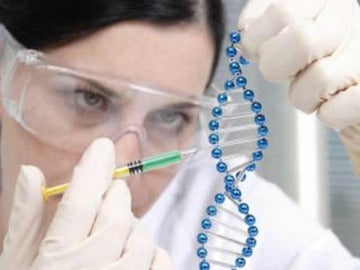 """Oncólogos: La investigación ha de ser un """"santuario intocable"""" para los recortes"""