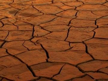 Suelo agrietado por la falta de agua