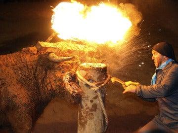 Toro con fuego en los cuernos