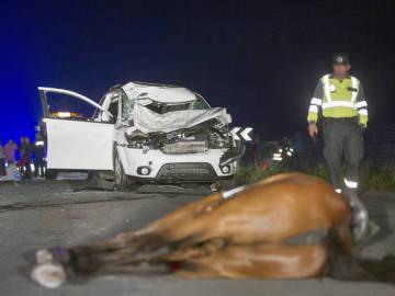 Muere una mujer y su caballo tras ser atropellados en Vilalba (Lugo)