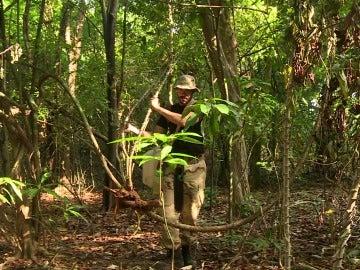 David recoge yuca en La Isla
