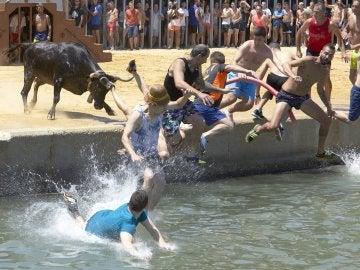 Varios mozos saltan al agua durante la celebración  de los 'Bous a la mar'