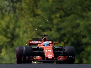 Fernando Alonso, durante el GP de Hungría