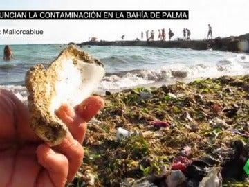 Ecologistas denuncian que en las playas de Mallorca hay 20.000 toneladas de plástico