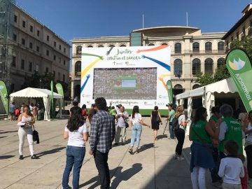 El mosaico de fotografías contra el cáncer, en la plaza del Reina Sofía