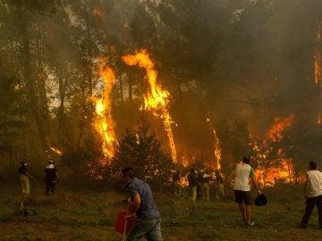 Un grupo de vecinos trabaja en el incendio en la zona de Zamanes, Vigo