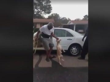 Una captura de la brutal agresión a un perro