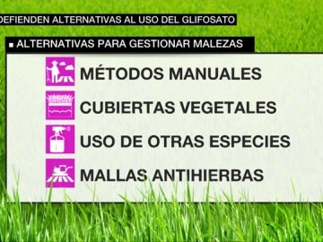 Alternativas al glifosato.