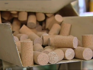 Extremadura produce el 12% del corcho mundial