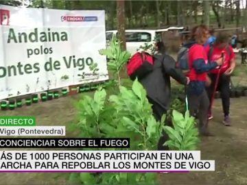 Más de 1.000 personas participan en una marcha para pedir repoblar los bosques de Vigo