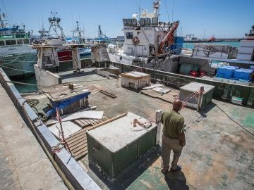 Pesqueros amarrados en el puerto de Barbate (Cádiz)