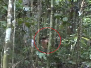 El indígena brasileño que lleva más de 20 años solo