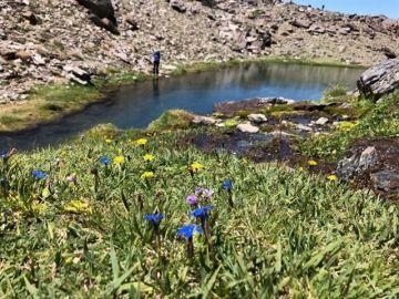 Sierra Nevada, en Granada