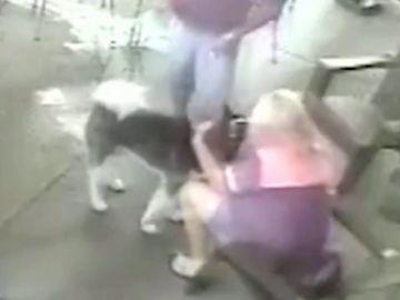 Una mujer se somete a una cirugía facial después de que un perro le mordiera la cara
