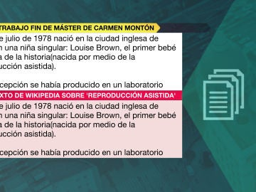 Comparamos textos del TFM de Carmen Montón (5)