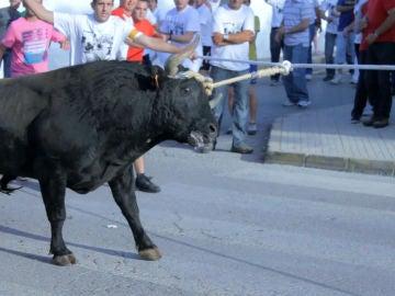 La Asociación 'Animanaturalis' denuncia la participación de decenas de menores en un espectáculo taurino en Tarragona