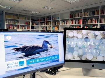 'Microplástico', palabra del año 2018 para la Fundéu