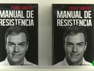 MANUAL PEDRO SANCHEZd