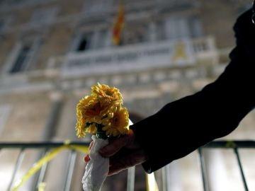 Una flor amarilla en la fachada de la Generalitat